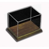 Rectangular Display Case with Hardwood Base
