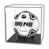 Soccer Ball Case