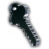 Key Shaped Award