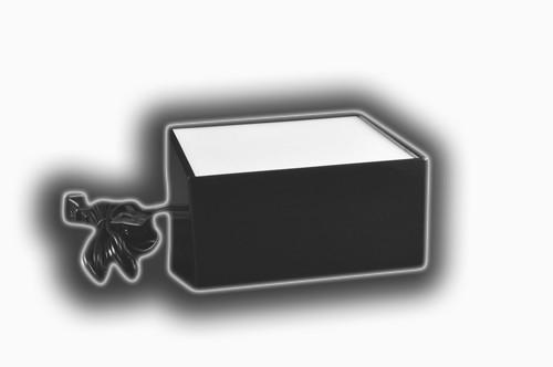 Large Light Boxes