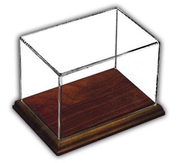Rectangular Display Case with Hardwood Base