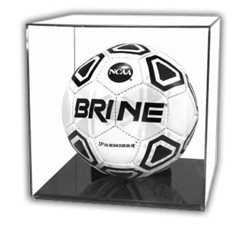 Soccer Ball Case